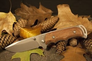 hunting knife on fallen leaves